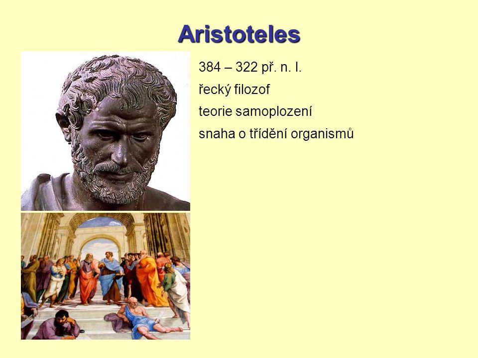Aristoteles 384 – 322 př. n. l. řecký filozof teorie samoplození snaha o třídění organismů
