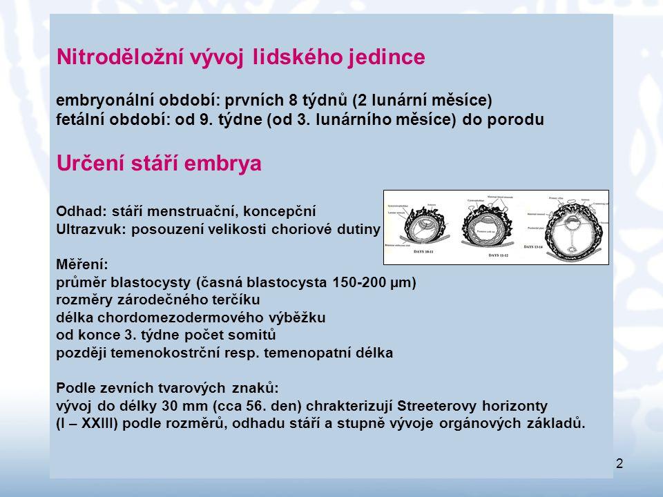 2 Nitroděložní vývoj lidského jedince embryonální období: prvních 8 týdnů (2 lunární měsíce) fetální období: od 9. týdne (od 3. lunárního měsíce) do p