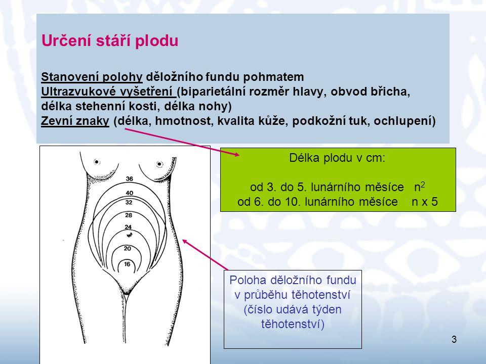 4 Poloha plodu = vztah dlouhé osy těla k dlouhé ose dělohy (podélná, příčná, šikmá) Postavení plodu = hřbet plodu přiléhá k pravé nebo levé hraně dělohy (postavení pravé nebo levé) Držení plodu = vzájemná poloha hlavy, trupu a končetin (hlava ve flexi, bradou se opírá o hrudník, trup kyfoticky ohnutý, horní končetiny zkřížené na hrudi, dolní končetiny ohnuté v kyčelním a kolenním kloubu, plod zaujímá co nejmenší prostor Naléhání = vztah těla k pánevnímu vchodu (naléhání hlavičkou nebo koncem pánevním) K.L.