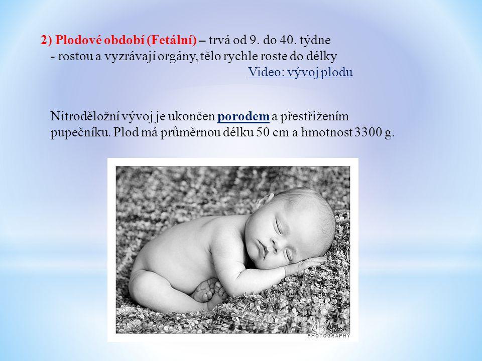 2) Plodové období (Fetální) – trvá od 9. do 40. týdne - rostou a vyzrávají orgány, tělo rychle roste do délky Video: vývoj plodu Nitroděložní vývoj je