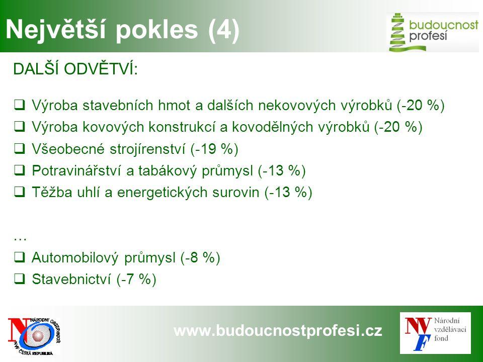 www.budoucnostprofesi.cz Největší pokles (4) DALŠÍ ODVĚTVÍ:  Výroba stavebních hmot a dalších nekovových výrobků (-20 %)  Výroba kovových konstrukcí
