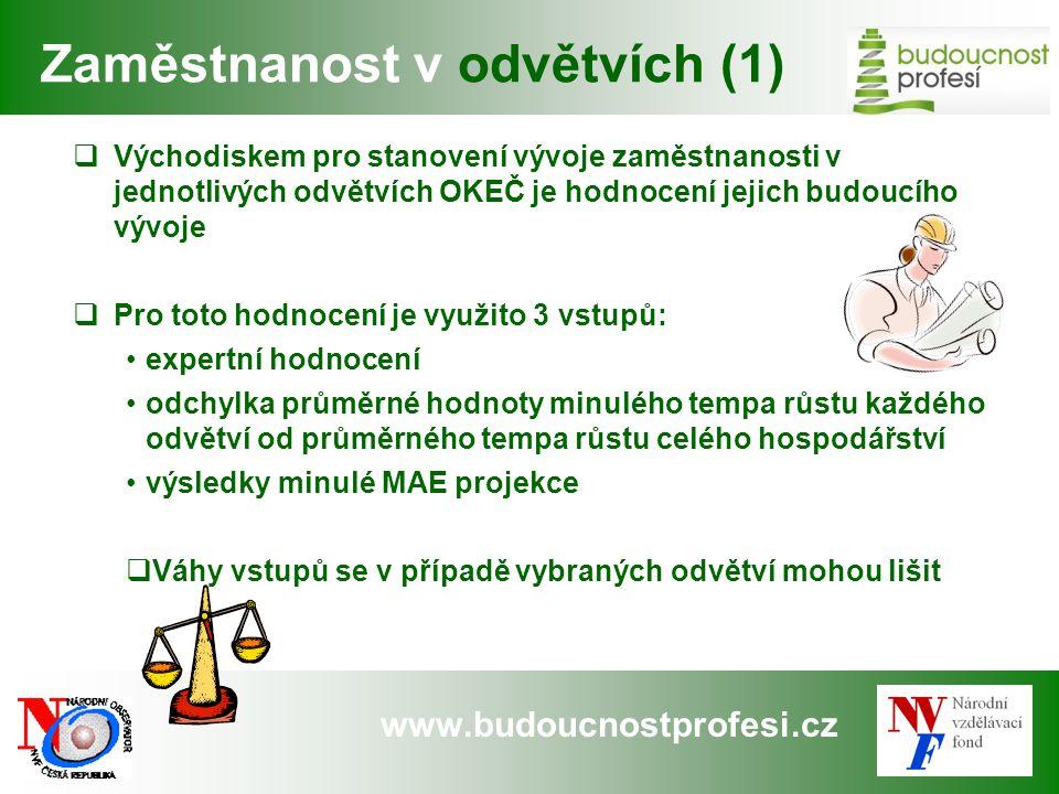 www.budoucnostprofesi.cz Zaměstnanost v odvětvích (1)  Východiskem pro stanovení vývoje zaměstnanosti v jednotlivých odvětvích OKEČ je hodnocení jeji