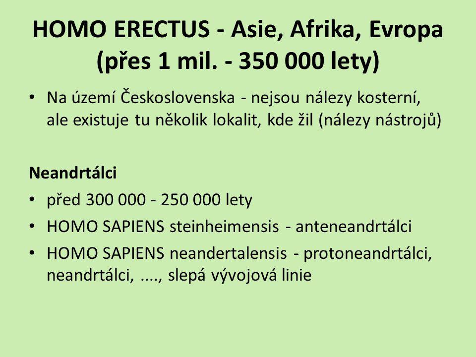 HOMO ERECTUS - Asie, Afrika, Evropa (přes 1 mil.