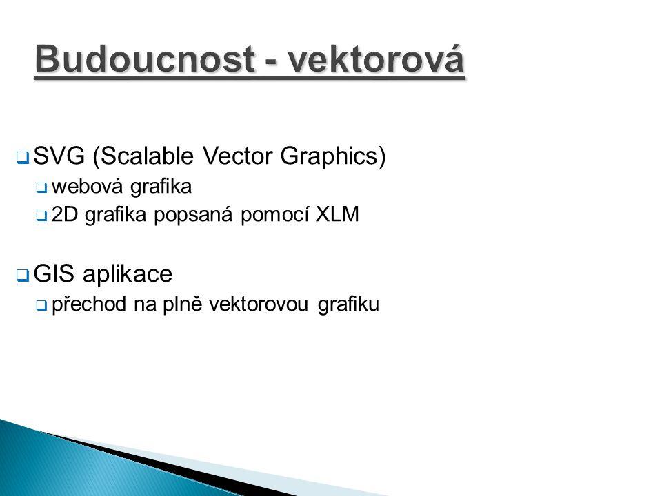 Budoucnost - vektorová  SVG (Scalable Vector Graphics)  webová grafika  2D grafika popsaná pomocí XLM  GIS aplikace  přechod na plně vektorovou g