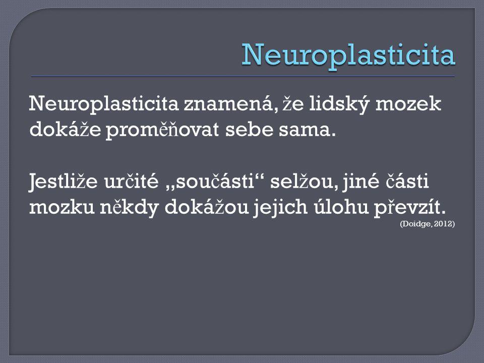 Neuroplasticita znamená, ž e lidský mozek doká ž e prom ěň ovat sebe sama.