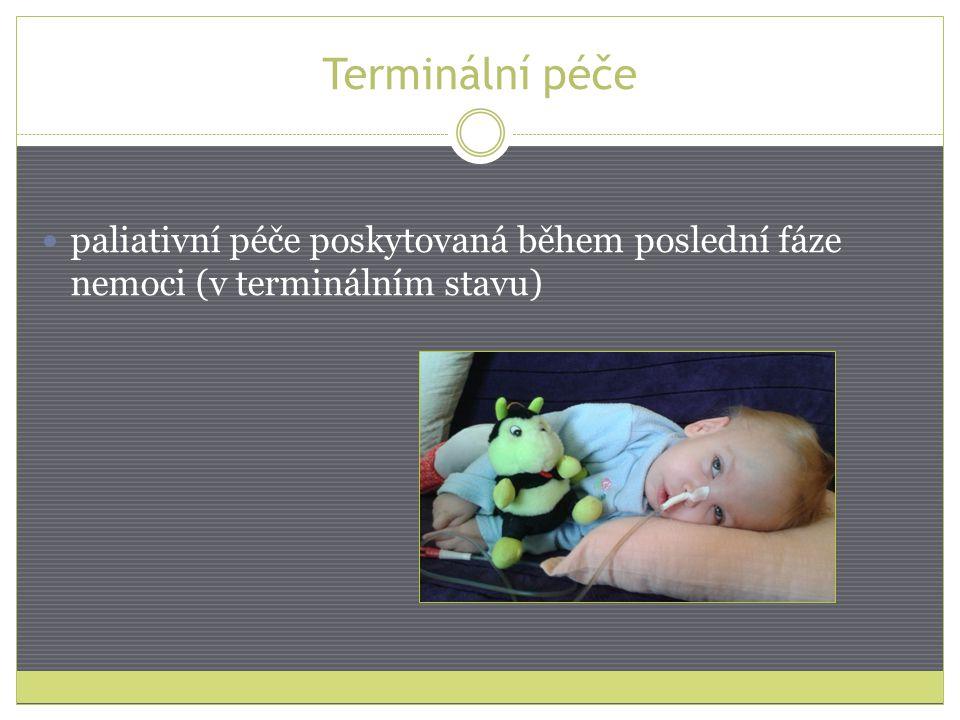 Terminální péče paliativní péče poskytovaná během poslední fáze nemoci (v terminálním stavu)