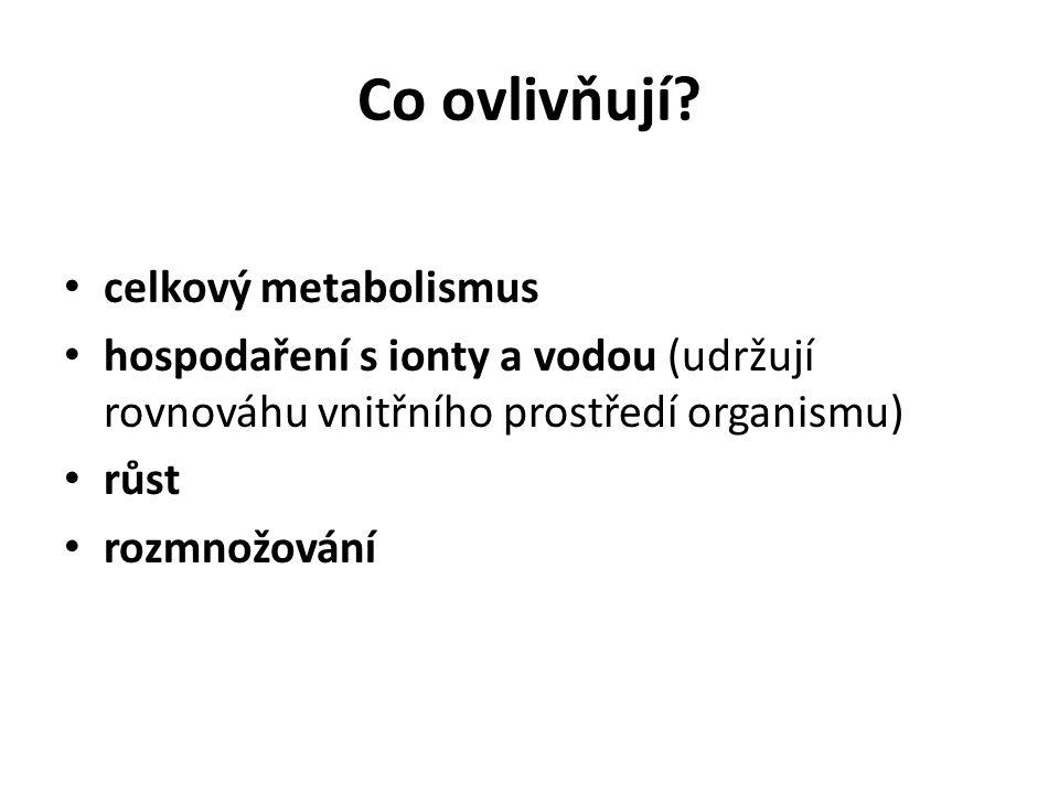 Co ovlivňují? celkový metabolismus hospodaření s ionty a vodou (udržují rovnováhu vnitřního prostředí organismu) růst rozmnožování