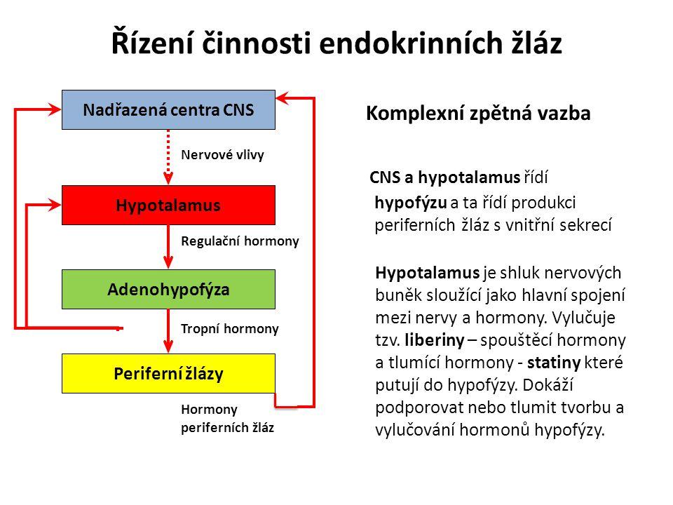 Řízení činnosti endokrinních žláz Komplexní zpětná vazba CNS a hypotalamus řídí hypofýzu a ta řídí produkci periferních žláz s vnitřní sekrecí Nadřazená centra CNS Hypotalamus Adenohypofýza Periferní žlázy Hormony periferních žláz Tropní hormony Regulační hormony Nervové vlivy Hypotalamus je shluk nervových buněk sloužící jako hlavní spojení mezi nervy a hormony.