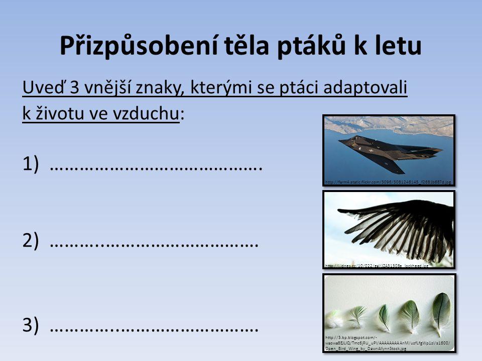 Přizpůsobení těla ptáků k letu Uveď 3 vnější znaky, kterými se ptáci adaptovali k životu ve vzduchu: 1)……………………………………. 2)………..…………………………. 3)…………..…………
