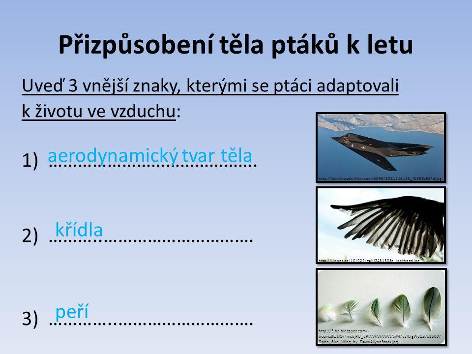 Použitá literatura a zdroje Dobroruka, L.J. et al.