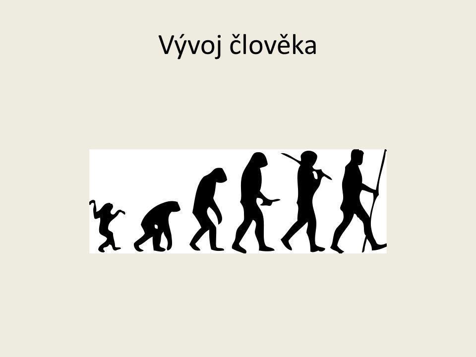 Vývoj člověka