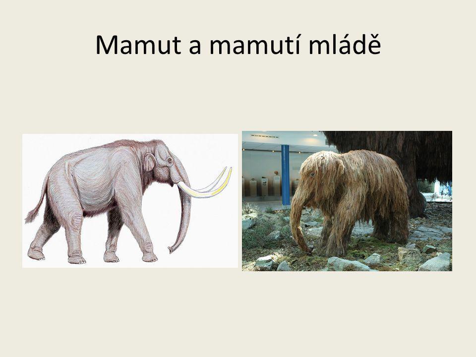Mamut a mamutí mládě