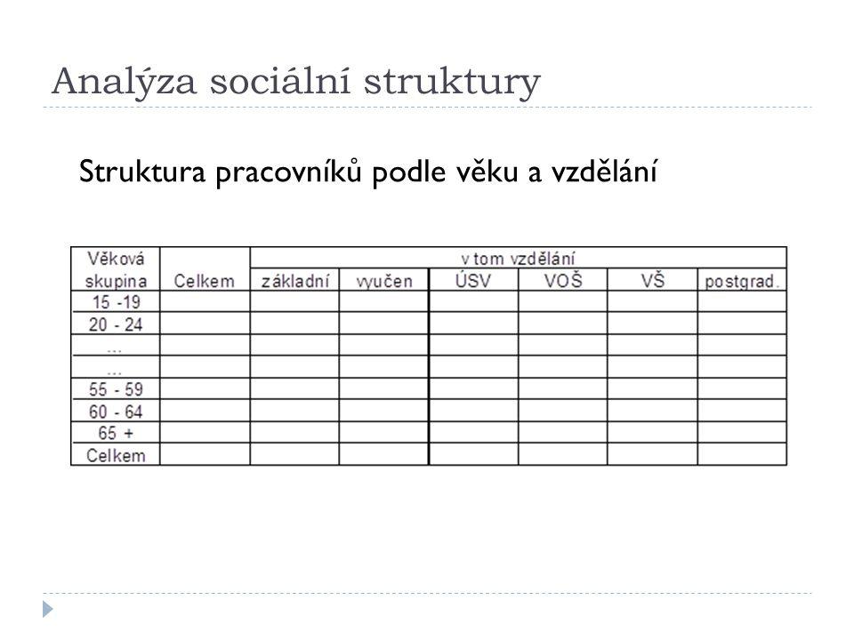 Analýza sociální struktury Struktura pracovníků podle věku a vzdělání