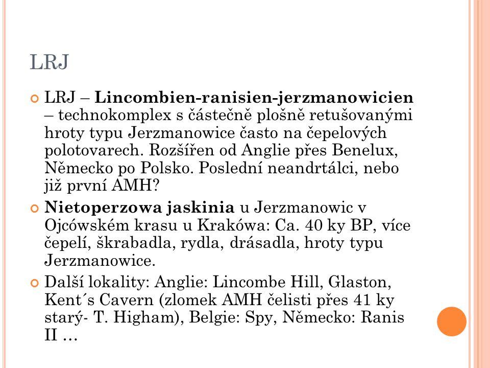 LRJ LRJ – Lincombien-ranisien-jerzmanowicien – technokomplex s částečně plošně retušovanými hroty typu Jerzmanowice často na čepelových polotovarech.