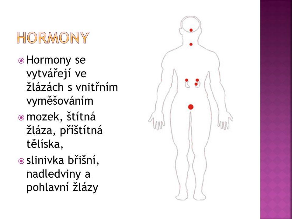  Hormony se vytvářejí ve žlázách s vnitřním vyměšováním  mozek, štítná žláza, příštítná tělíska,  slinivka břišní, nadledviny a pohlavní žlázy