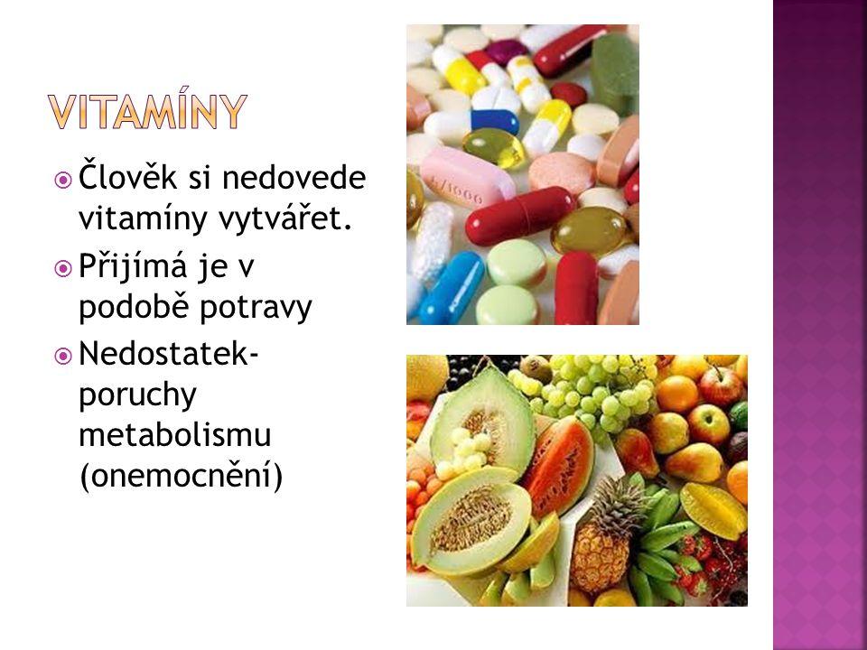  Člověk si nedovede vitamíny vytvářet.