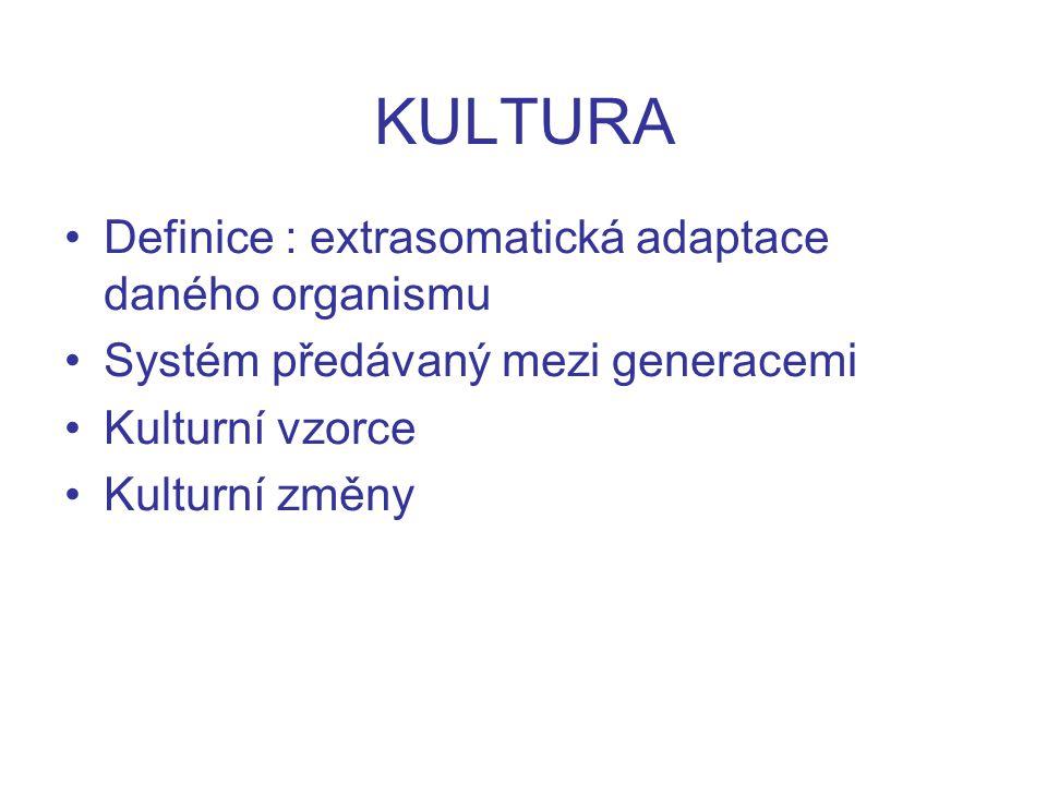 KULTURA Definice : extrasomatická adaptace daného organismu Systém předávaný mezi generacemi Kulturní vzorce Kulturní změny