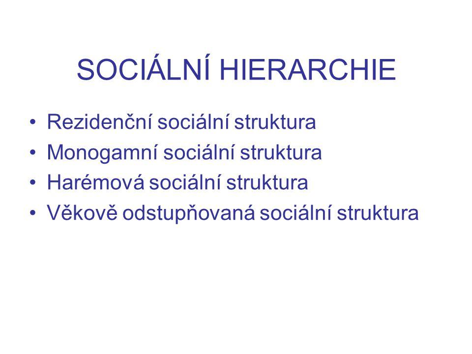 SOCIÁLNÍ HIERARCHIE Rezidenční sociální struktura Monogamní sociální struktura Harémová sociální struktura Věkově odstupňovaná sociální struktura