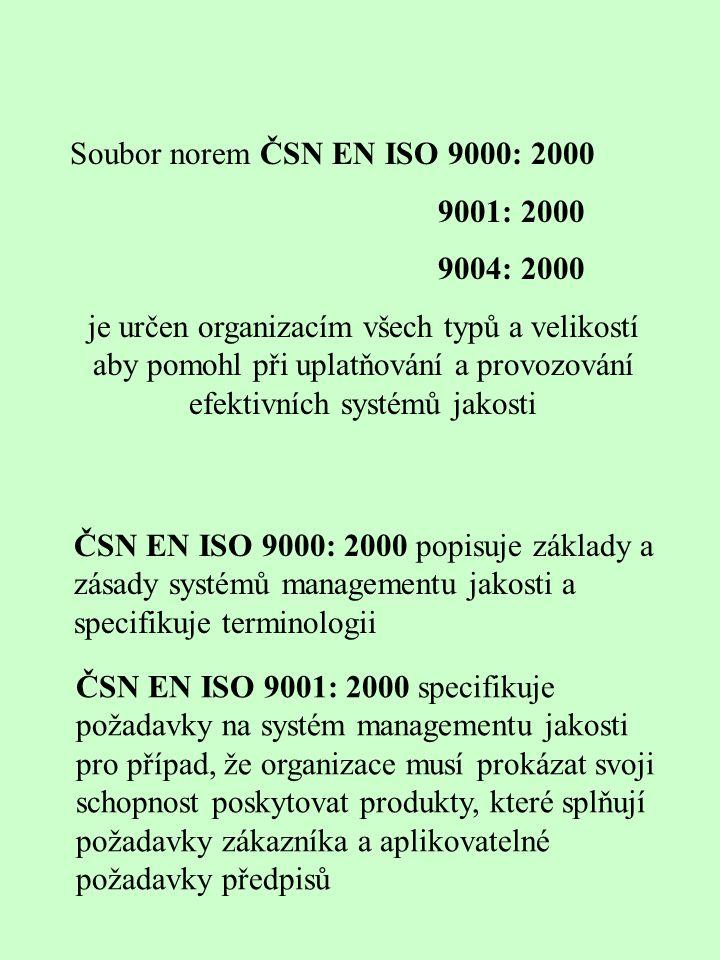 Soubor norem ČSN EN ISO 9000: 2000 9001: 2000 9004: 2000 je určen organizacím všech typů a velikostí aby pomohl při uplatňování a provozování efektivních systémů jakosti ČSN EN ISO 9000: 2000 popisuje základy a zásady systémů managementu jakosti a specifikuje terminologii ČSN EN ISO 9001: 2000 specifikuje požadavky na systém managementu jakosti pro případ, že organizace musí prokázat svoji schopnost poskytovat produkty, které splňují požadavky zákazníka a aplikovatelné požadavky předpisů