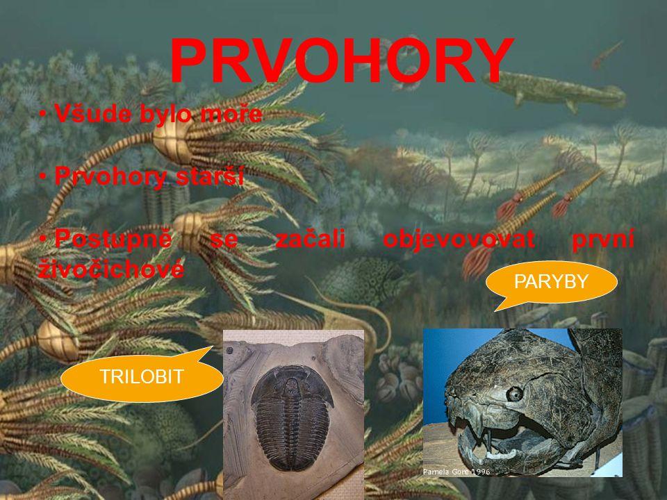 PRVOHORY Všude bylo moře Prvohory starší Postupně se začali objevovovat první živočichové TRILOBIT PARYBY