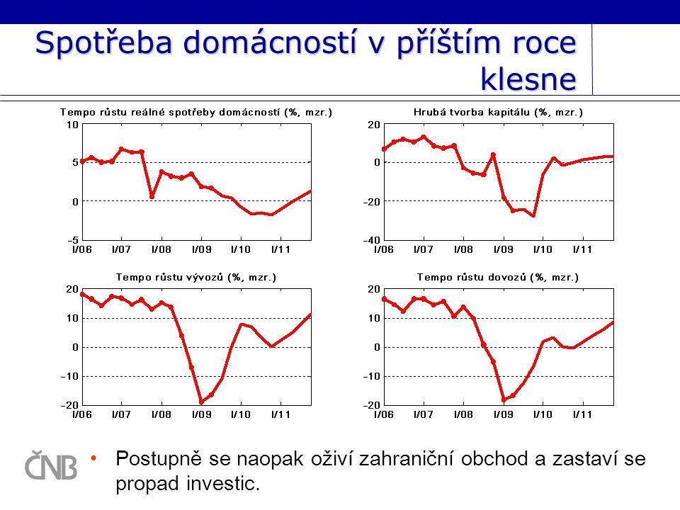 Spotřeba domácností v příštím roce klesne Postupně se naopak oživí zahraniční obchod a zastaví se propad investic.