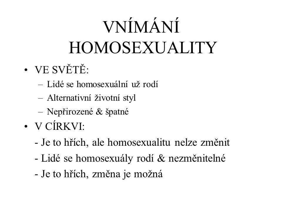 VNÍMÁNÍ HOMOSEXUALITY VE SVĚTĚ: –Lidé se homosexuální už rodí –Alternativní životní styl –Nepřirozené & špatné V CÍRKVI: - Je to hřích, ale homosexualitu nelze změnit - Lidé se homosexuály rodí & nezměnitelné - Je to hřích, změna je možná