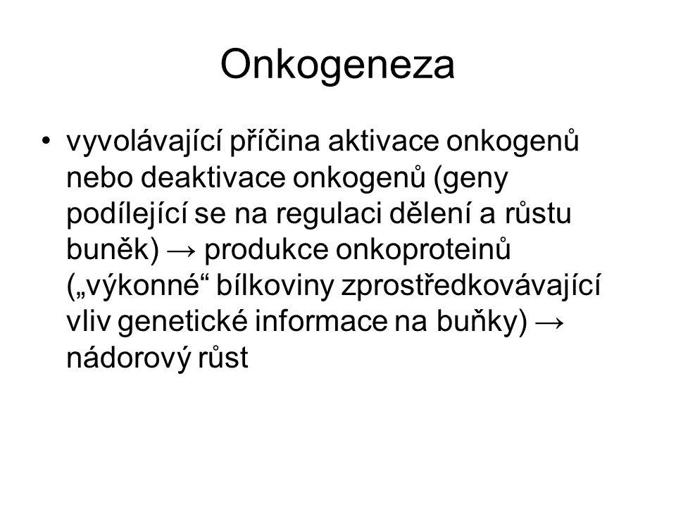 Onkogeneza vyvolávající příčina aktivace onkogenů nebo deaktivace onkogenů (geny podílející se na regulaci dělení a růstu buněk) → produkce onkoprotei