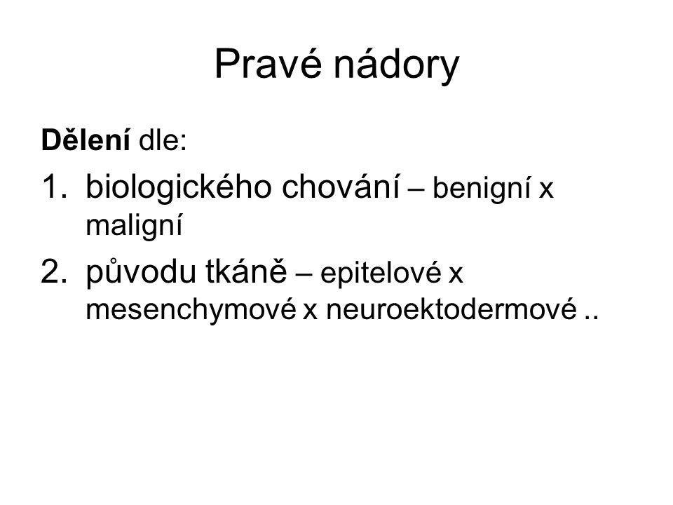 Pravé nádory Dělení dle: 1.biologického chování – benigní x maligní 2.původu tkáně – epitelové x mesenchymové x neuroektodermové..