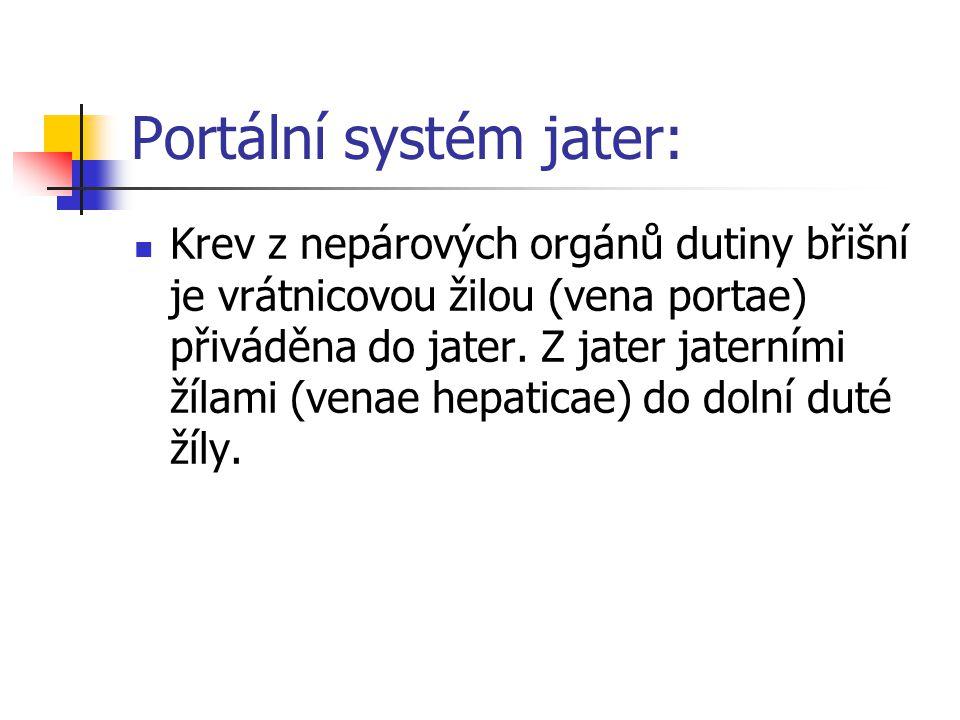 Portální systém jater: Krev z nepárových orgánů dutiny břišní je vrátnicovou žilou (vena portae) přiváděna do jater. Z jater jaterními žílami (venae h