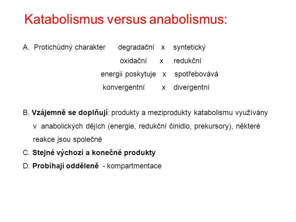 Anabolismus výrobní fáze metabolismu - biosynthesa/biogenese Vzrůst komplexity látek vyžaduje energii - ATP Celkově redukční charakter – redukční činidlo NADPH + H + 1.stupeň: intermediáty 2.