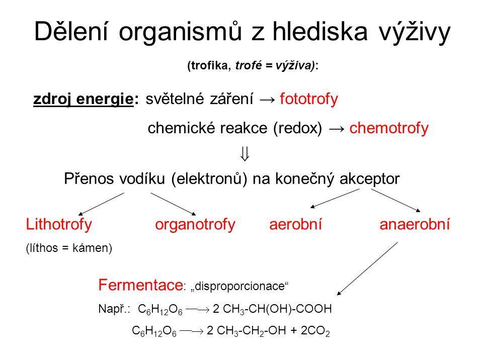 Metabolismus Obecné znaky metabolismu Získání a využití energie - bioenergetika Buněčné dýchání (glykolysa + CKC + oxidativní fosforylace) Biosynthesa sacharidů + fotosynthesa Metabolismus lipidů Metabolismus dusíkatých látek