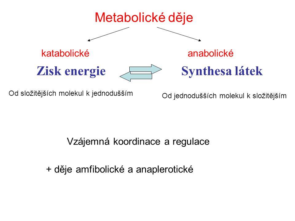 TYP METABOLISMUZDROJ UHLÍKUZDROJ VODÍKU OXIDAČNÍ ČINIDLO (akcept. H) PŘÍKLADY ORGA- NISMÙ fotolithotrofní (autotrofní) CO 2 H2OH2O zelené buňky rostli