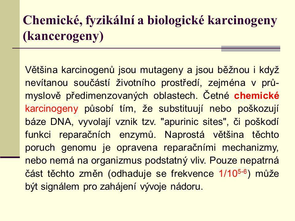 Chemické, fyzikální a biologické karcinogeny (kancerogeny) Většina karcinogenů jsou mutageny a jsou běžnou i když nevítanou součástí životního prostře