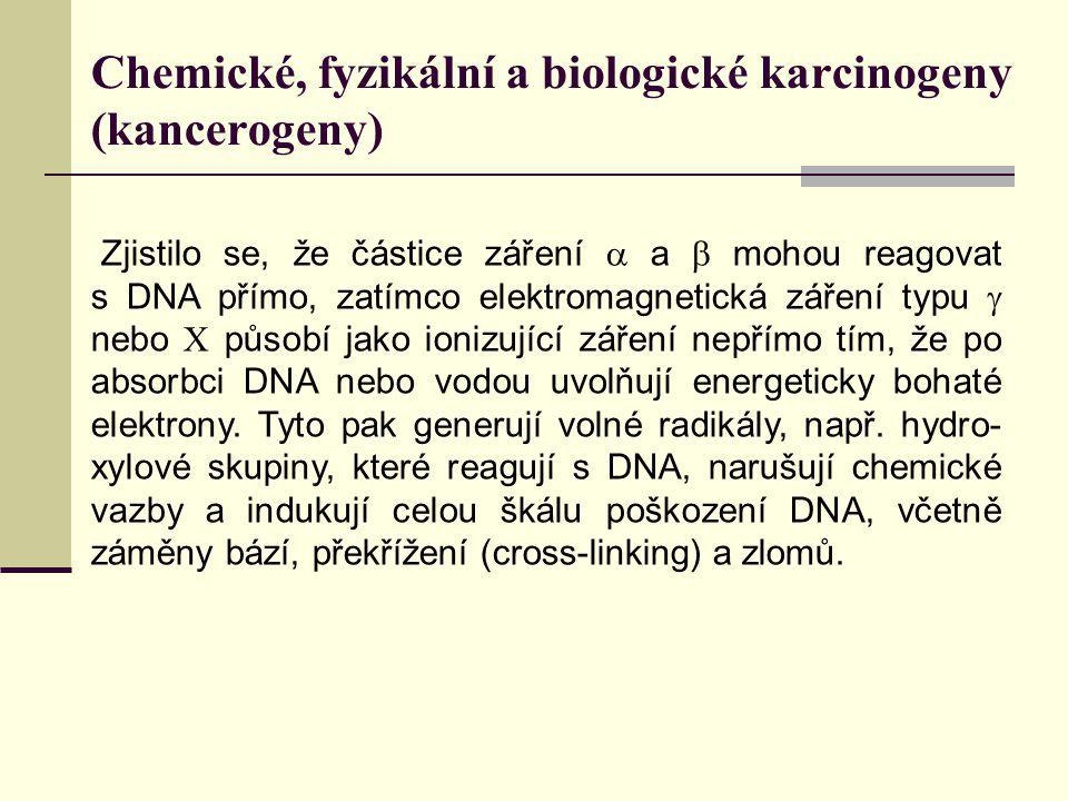 Chemické, fyzikální a biologické karcinogeny (kancerogeny) Zjistilo se, že částice záření  a  mohou reagovat s DNA přímo, zatímco elektromagnetická