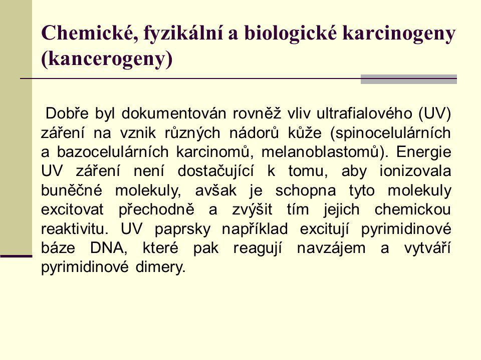 Chemické, fyzikální a biologické karcinogeny (kancerogeny) Dobře byl dokumentován rovněž vliv ultrafialového (UV) záření na vznik různých nádorů kůže