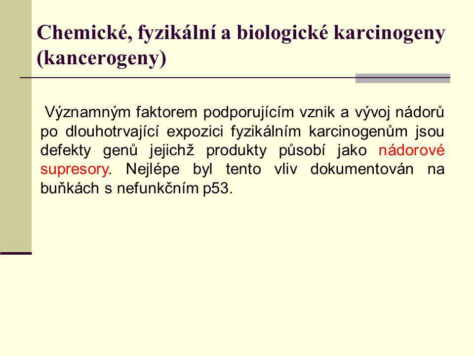 Chemické, fyzikální a biologické karcinogeny (kancerogeny) Významným faktorem podporujícím vznik a vývoj nádorů po dlouhotrvající expozici fyzikálním