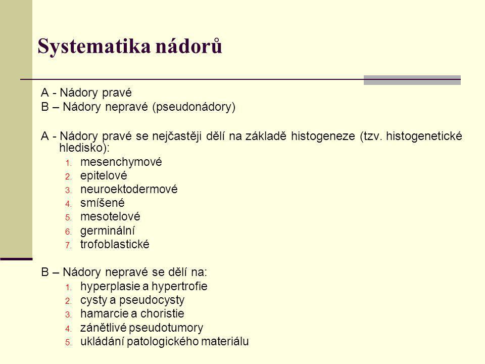 Systematika nádorů A - Nádory pravé B – Nádory nepravé (pseudonádory) A - Nádory pravé se nejčastěji dělí na základě histogeneze (tzv. histogenetické