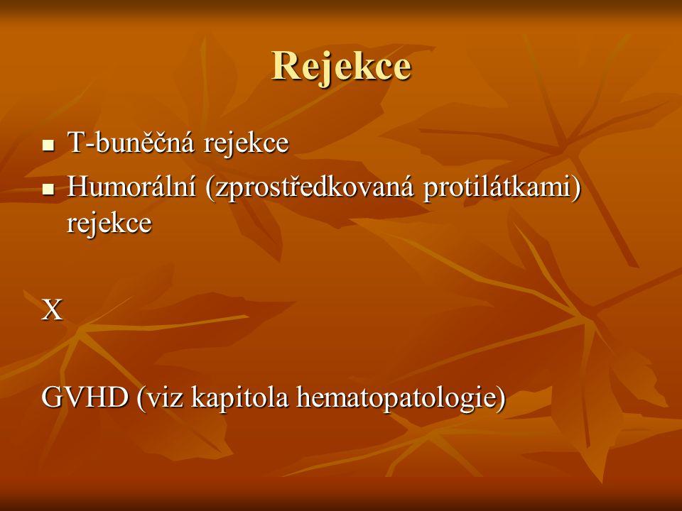Rejekce T-buněčná rejekce T-buněčná rejekce Humorální (zprostředkovaná protilátkami) rejekce Humorální (zprostředkovaná protilátkami) rejekceX GVHD (v