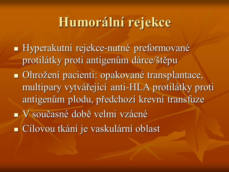 Humorální rejekce Hyperakutní rejekce-nutné preformované protilátky proti antigenům dárce/štěpu Hyperakutní rejekce-nutné preformované protilátky prot