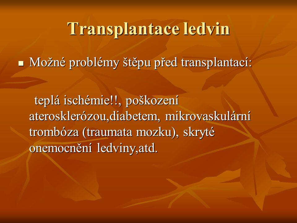 Transplantace ledvin Možné problémy štěpu před transplantací: Možné problémy štěpu před transplantací: teplá ischémie!!, poškození aterosklerózou,diab