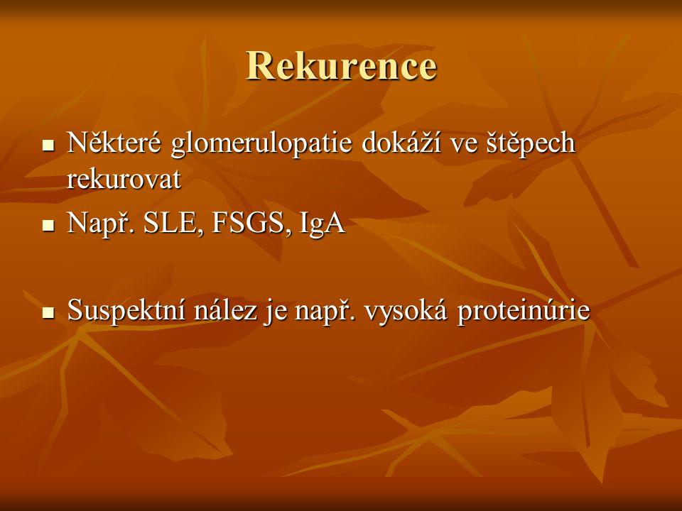 Rekurence SLE
