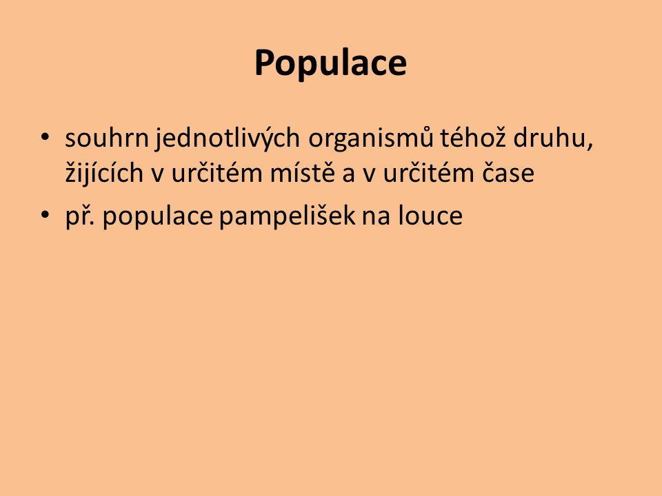 Populace souhrn jednotlivých organismů téhož druhu, žijících v určitém místě a v určitém čase př. populace pampelišek na louce