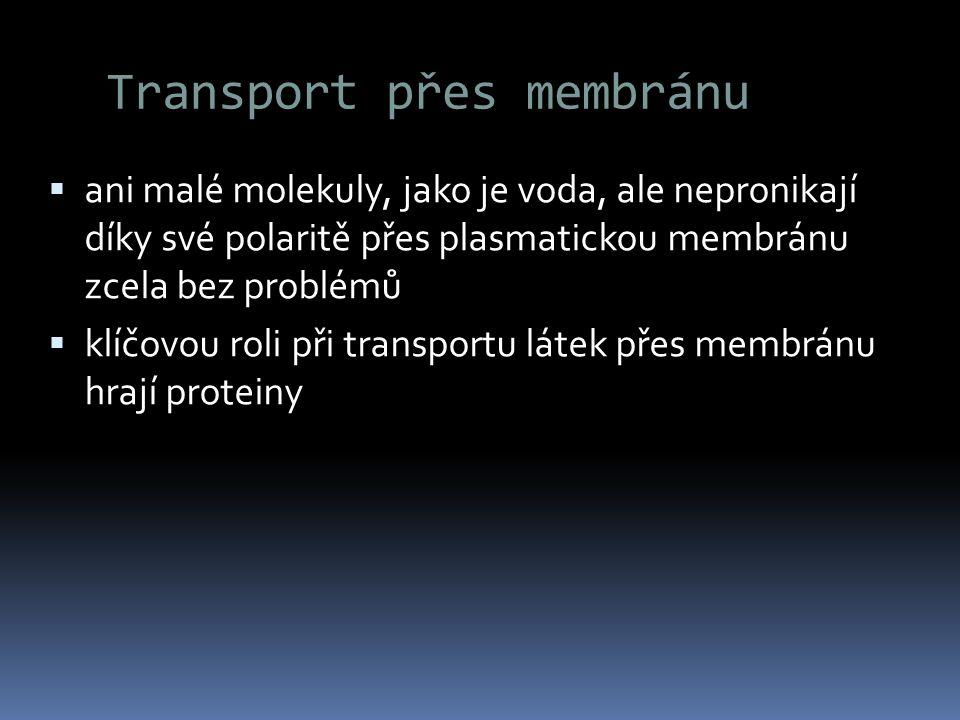 Transport přes membránu  ani malé molekuly, jako je voda, ale nepronikají díky své polaritě přes plasmatickou membránu zcela bez problémů  klíčovou