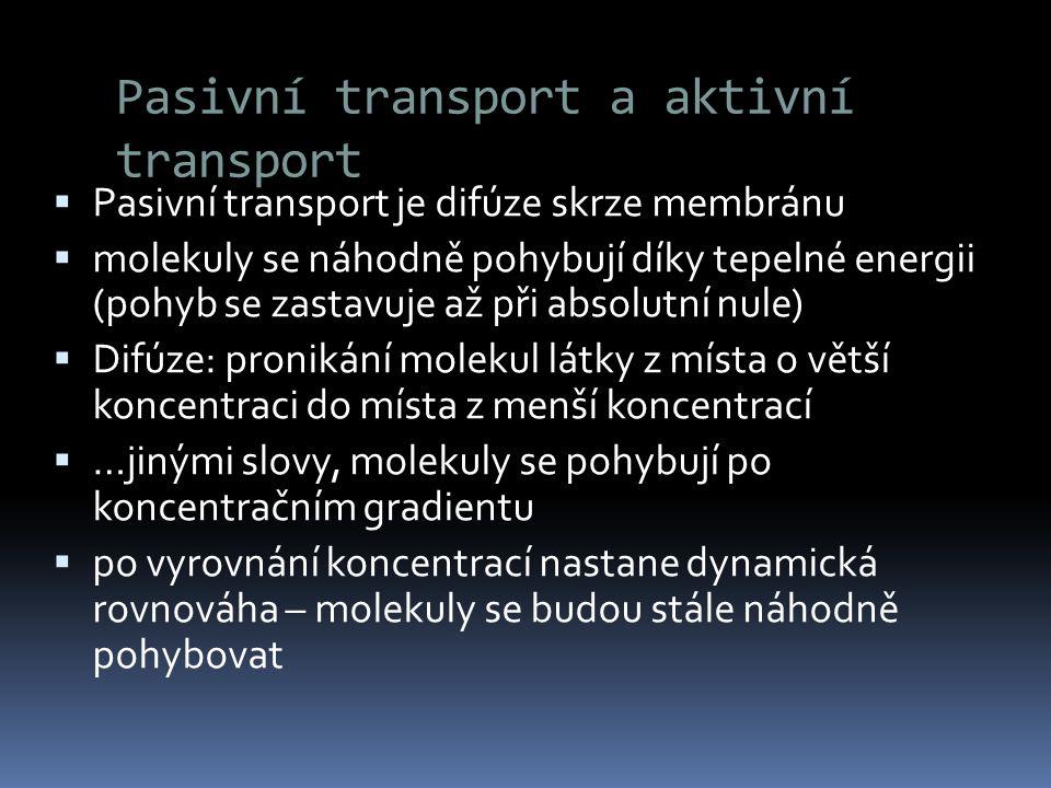 Pasivní transport a aktivní transport  Pasivní transport je difúze skrze membránu  molekuly se náhodně pohybují díky tepelné energii (pohyb se zasta