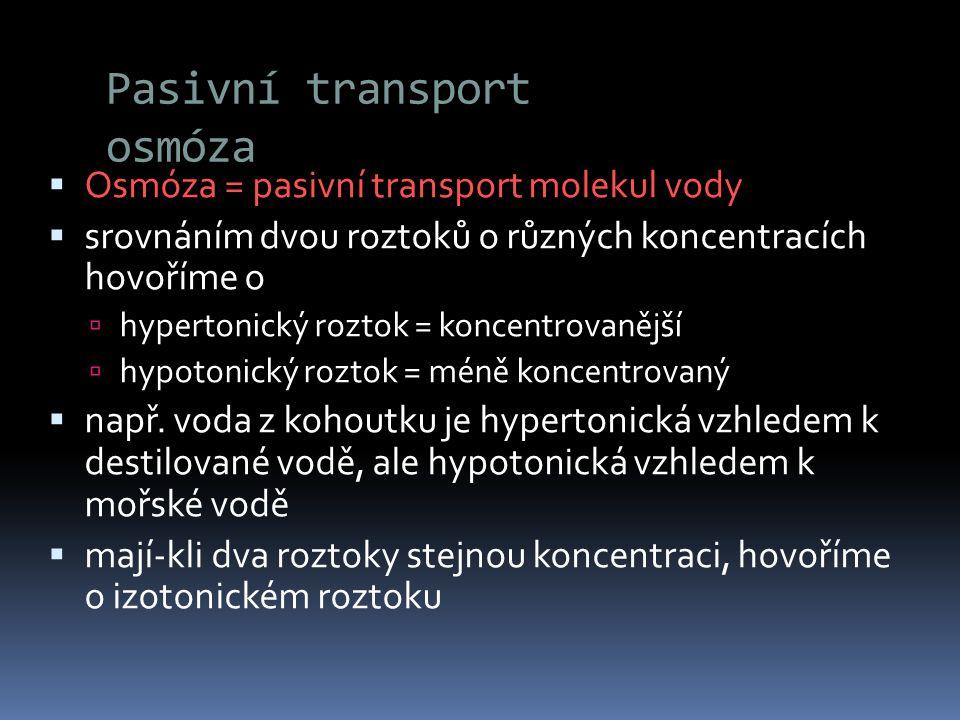 Pasivní transport osmóza  Osmóza = pasivní transport molekul vody  srovnáním dvou roztoků o různých koncentracích hovoříme o  hypertonický roztok =