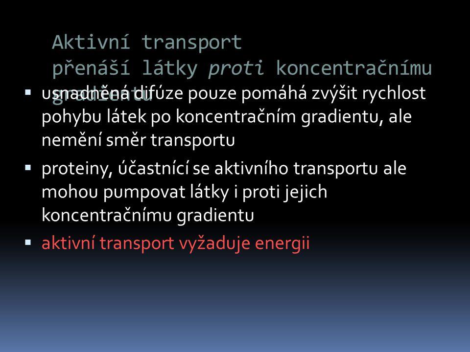 Aktivní transport přenáší látky proti koncentračnímu gradientu  usnadněná difúze pouze pomáhá zvýšit rychlost pohybu látek po koncentračním gradientu