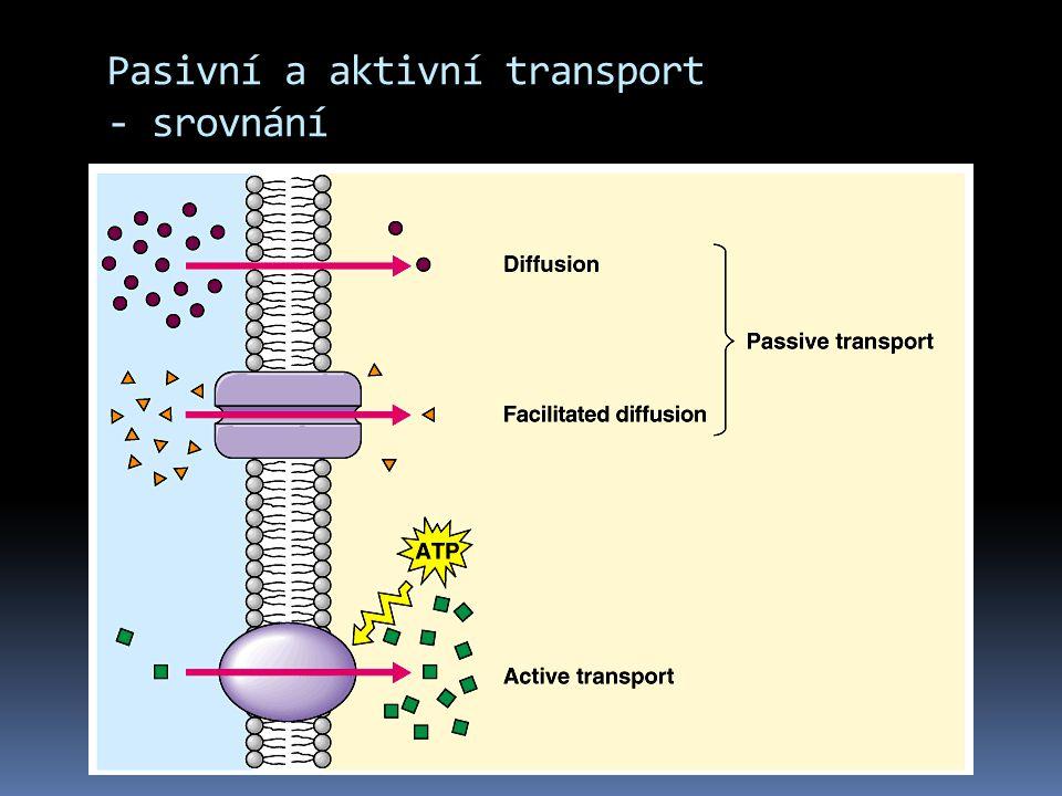 Pasivní a aktivní transport - srovnání