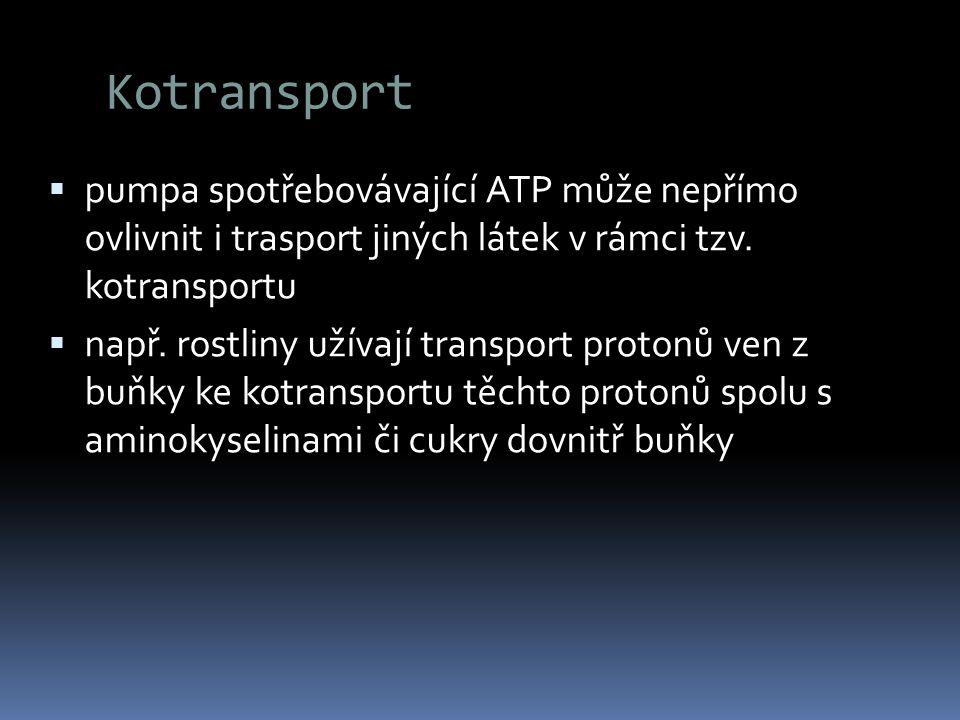 Kotransport  pumpa spotřebovávající ATP může nepřímo ovlivnit i trasport jiných látek v rámci tzv. kotransportu  např. rostliny užívají transport pr