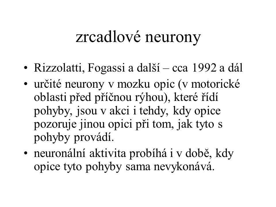 zrcadlové neurony Rizzolatti, Fogassi a další – cca 1992 a dál určité neurony v mozku opic (v motorické oblasti před příčnou rýhou), které řídí pohyby