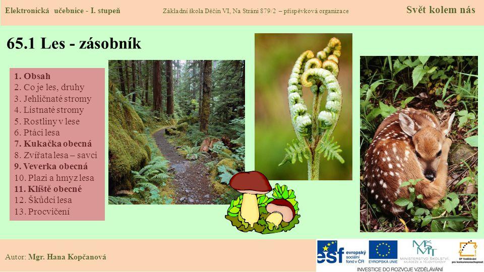 65.2 Co je to les.Druhy lesů: Elektronická učebnice - I.